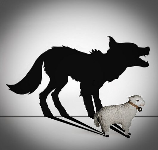 wolf_sheeps-clothing
